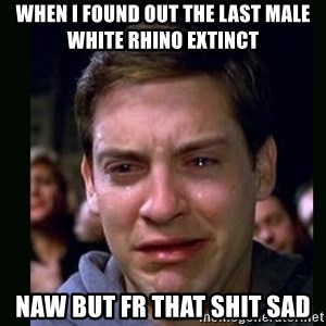 crying peter parker - when i found out the last male white rhino extinct naw but fr that shit sad