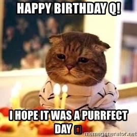 Birthday Cat - Happy Birthday Q! I hope it was a purrfect day 😺