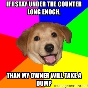 Advice Dog - If i stay under the counter long enogh, Than my owner will take a dump