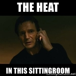 liam neeson taken - The heat In this sittingroom