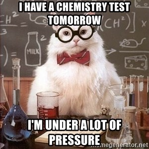 Chemistry Cat - I have a chemistry test tomorrow I'm under a lot of pressure