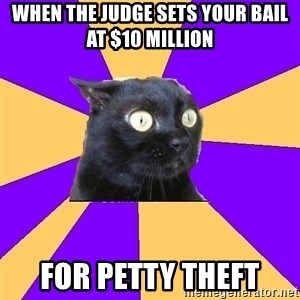 Anxiety Cat - When the judge sets your bail at $10 million For petty theft