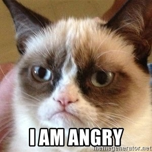 Angry Cat Meme - I am angry