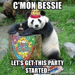 Happy Birthday Panda - c'mon bessie let's get this party started..