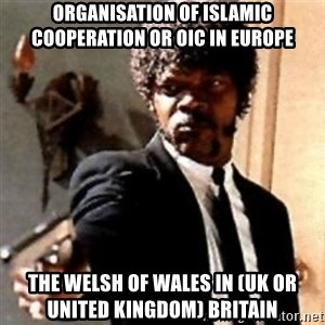 English motherfucker, do you speak it? - Organisation of Islamic Cooperation or OIC in Europe  The Welsh of Wales in (UK or United Kingdom) Britain