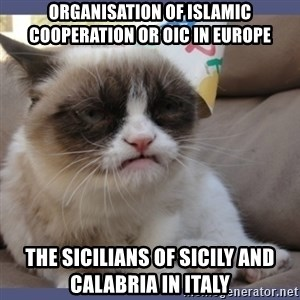 Birthday Grumpy Cat - Organisation of Islamic Cooperation or OIC in Europe  The Sicilians of Sicily and Calabria in Italy