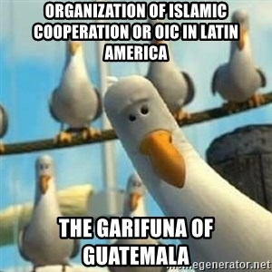 Nemo Seagulls - Organization of Islamic Cooperation or OIC in Latin America  The Garifuna of Guatemala