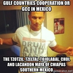 Drum And Bass Guy - Gulf Countries Cooperation or GCC in Mexico  The Tzotzil, Tzeltal, Tojolabal, Chol and Lacandon Maya of Chiapas Southern Mexico
