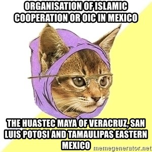 Hipster Cat - Organisation of Islamic Cooperation or OIC in Mexico  The Huastec Maya of Veracruz, San Luis Potosi and Tamaulipas Eastern Mexico