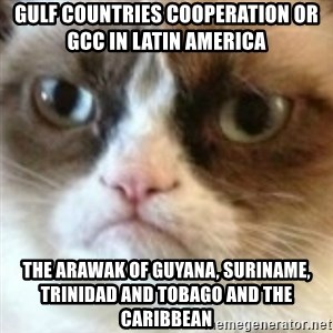 angry cat asshole - Gulf Countries Cooperation or GCC in Latin America  The Arawak of Guyana, Suriname, Trinidad and Tobago and the Caribbean