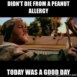 Ice Cube- Today was a Good day - didn't die from a peanut allergy Today was a good day