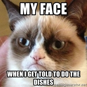 Angry Cat Meme - my face when i get told to do the dishes