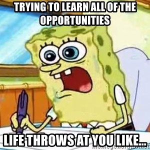 Spongebob What I Learned In Boating School Is - trying to learn all of the opportunities  Life throws at you like...