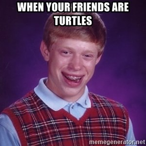 Bad Luck Brian - When your friends are turtles