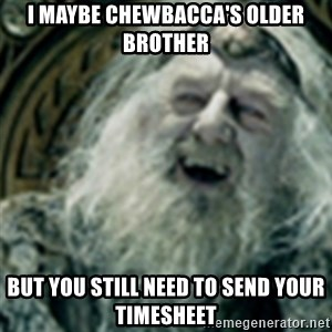 you have no power here - I maybe Chewbacca's older brother But you still need to send your timesheet