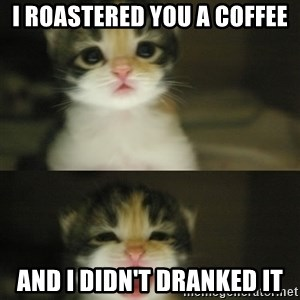 Adorable Kitten - i roastered you a coffee and I didn't dranked it