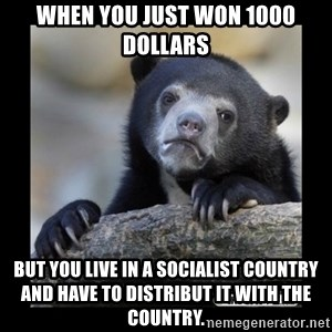 sad bear - when you just won 1000 dollars  but you live in a socialist country and have to distribut it with the country.