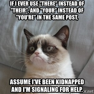 """Grumpy cat good - If I ever use """"there"""" instead of """"their"""", and """"your"""" instead of """"you're"""" in the same post, assume I've been kidnapped       and I'm signaling for help."""
