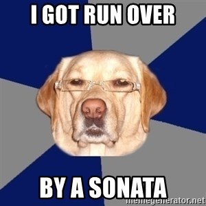 Racist Dog - I got run over By a Sonata