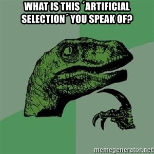 Philosoraptor - what is this ´artificial selection´ you speak of?