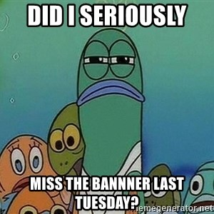 Serious Fish Spongebob - DID I SERIOUSLY  Miss the bannner last Tuesday?