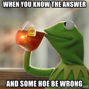 Kermit The Frog Drinking Tea - when you know the answer  and some hoe be wrong
