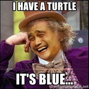 yaowonkaxd - I have a turtle it's blue...