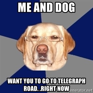 Racist Dog - me and dog want you to go to telegraph road. .right now