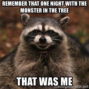 evil raccoon - remember that one night with the monster in the tree that was me