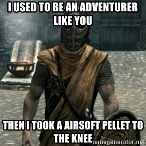 skyrim whiterun guard - I used to be an adventurer like you Then I took a airsoft pellet to the knee