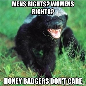 Honey Badger Actual - Mens rights? Womens Rights? honey badgers don't care