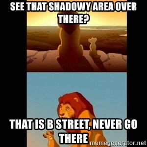 Lion King Shadowy Place - See that shadowy area over there? That is B Street, never go there