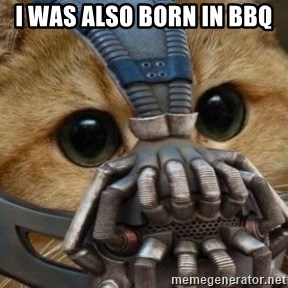 bane cat - I was also born in bbq
