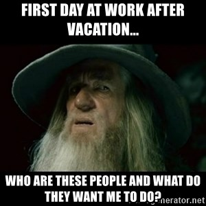 no memory gandalf - FIRST DAY AT WORK AFTER VACATION... WHO ARE THESE PEOPLE AND WHAT DO THEY WANT ME TO DO?
