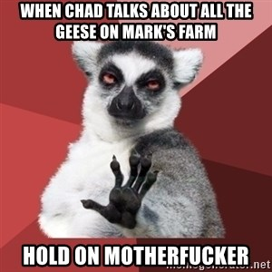 Chill Out Lemur - When Chad talks about all the geese on Mark's farm Hold on motherfucker