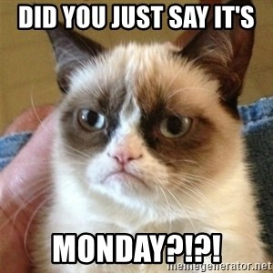 Grumpy Cat  - Did you just say it's  monday?!?!