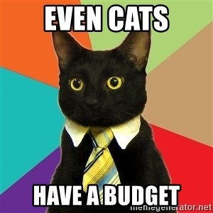 Business Cat - EVEN CATS HAVE A BUDGET