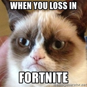 Angry Cat Meme - when you loss in  fortnite