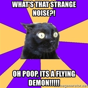 Anxiety Cat - what's that strange noise?! Oh poop, its a flying demon!!!!!