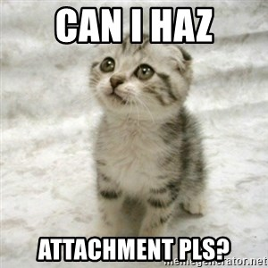 Can haz cat - Can i haz attachment pls?