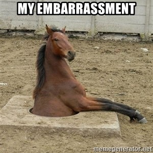 Hole Horse - My embarrassment