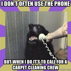 Yes, this is dog! - I don't often use the phone But when I do it's to call for a carpet cleaning crew