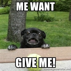 Ermahgerd Pug - me want give me!