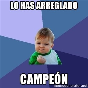 Success Kid - lo has arreglado campeón