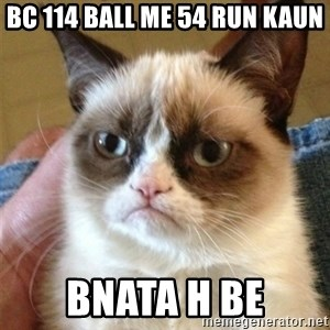 Grumpy Cat  - Bc 114 ball me 54 run kaun Bnata h be