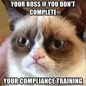 Angry Cat Meme - Your boss if you don't complete your Compliance training
