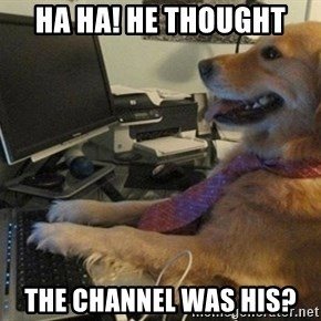 I have no idea what I'm doing - Dog with Tie - Ha ha! He thought the channel was his?