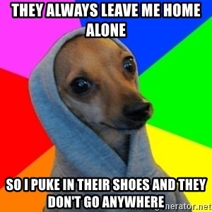 Good Guy Greg's dog - they always leave me home alone  so i puke in their shoes and they don't go anywhere