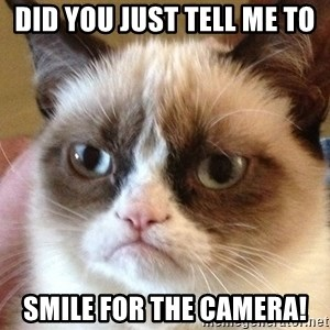 Angry Cat Meme - Did you just tell me to  smile for the camera!