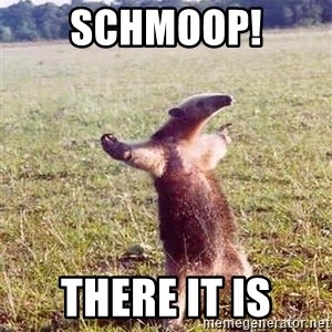 Anteater - Schmoop! There it is